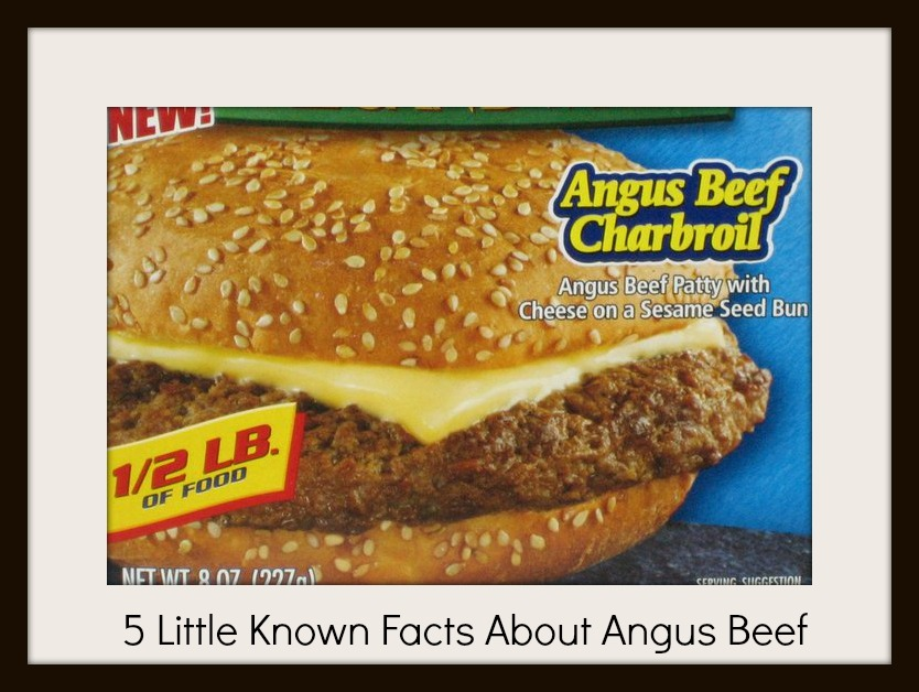 What is Angus