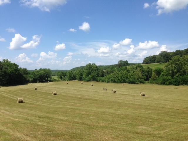 Hay Bales in Field - Clover Meadows Beef Grass Fed Beef - St Louis Missouri