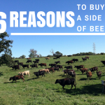 6 Reasons You Should Buy a Side of Beef