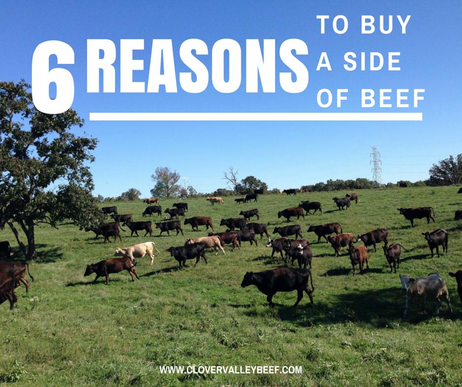bdo how to get beef