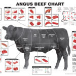 What Everybody Ought to Know About Beef Cuts