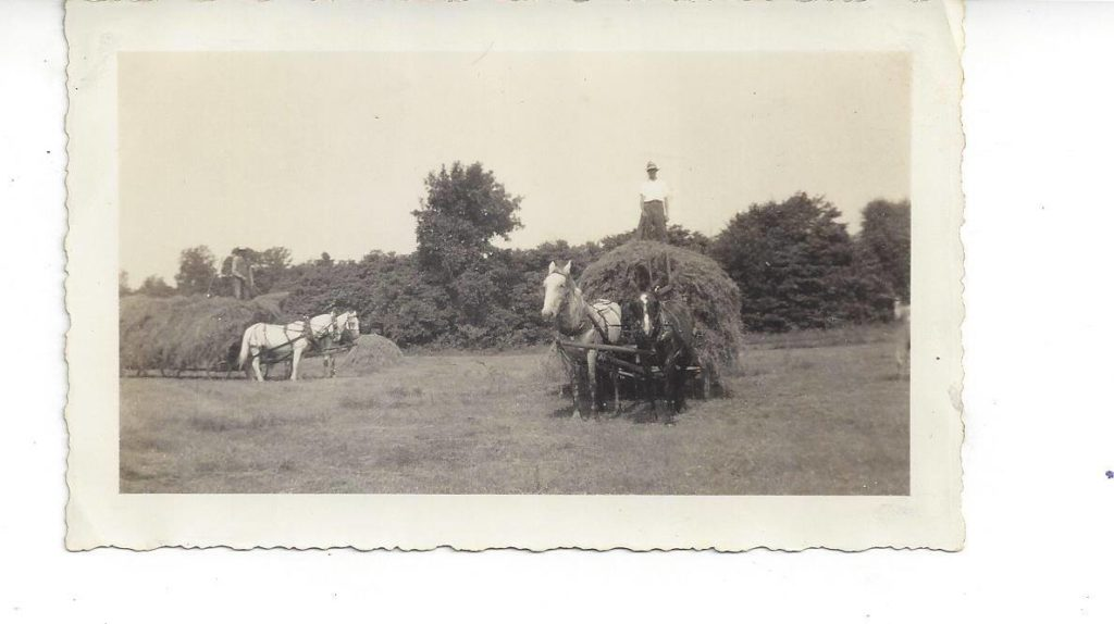 Making Hay Bales | Clover Meadows Beef | www.clovermeadowsbeef.com