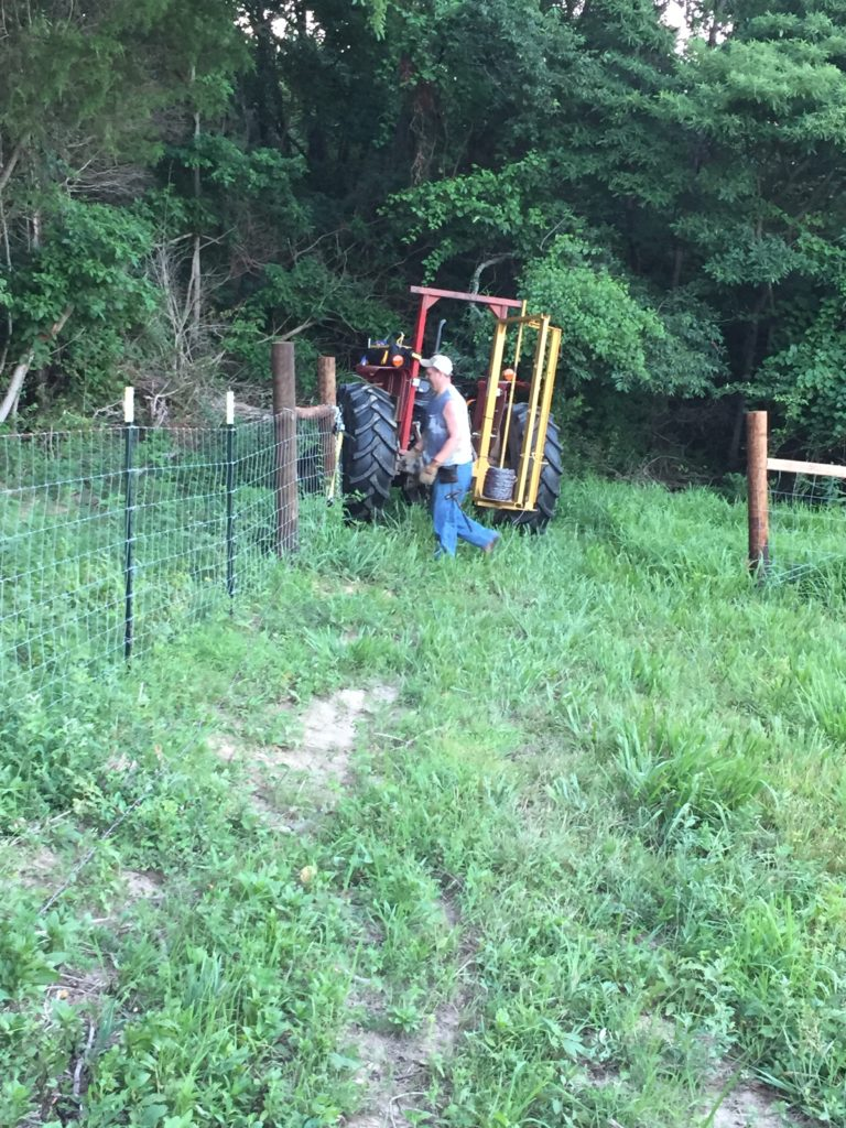 Massey Ferguson Tractor   building a fence   Clover Meadows Beef Grass Fed Beef St. Louis Missouri   Free Delivery
