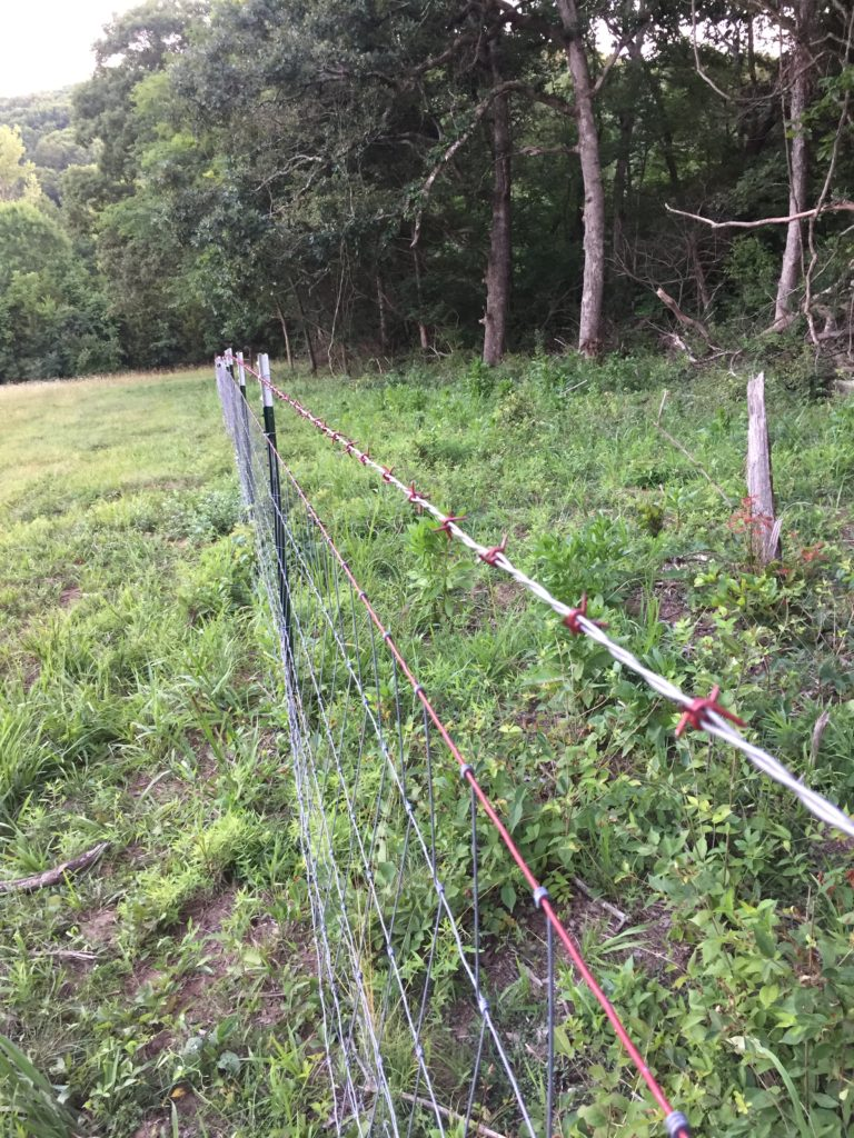 building a fence   Clover Meadows Beef Grass Fed Beef St. Louis Missouri   Free Delivery