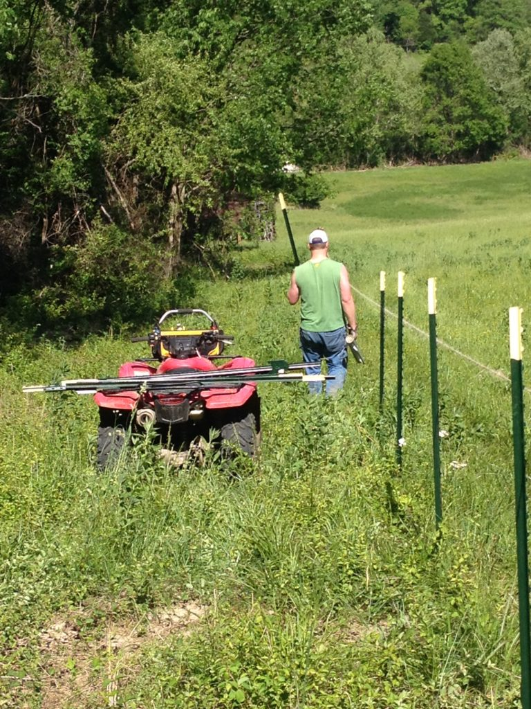 Honda ATV   building a fence   Clover Meadows Beef Grass Fed Beef St. Louis Missouri   Free Delivery