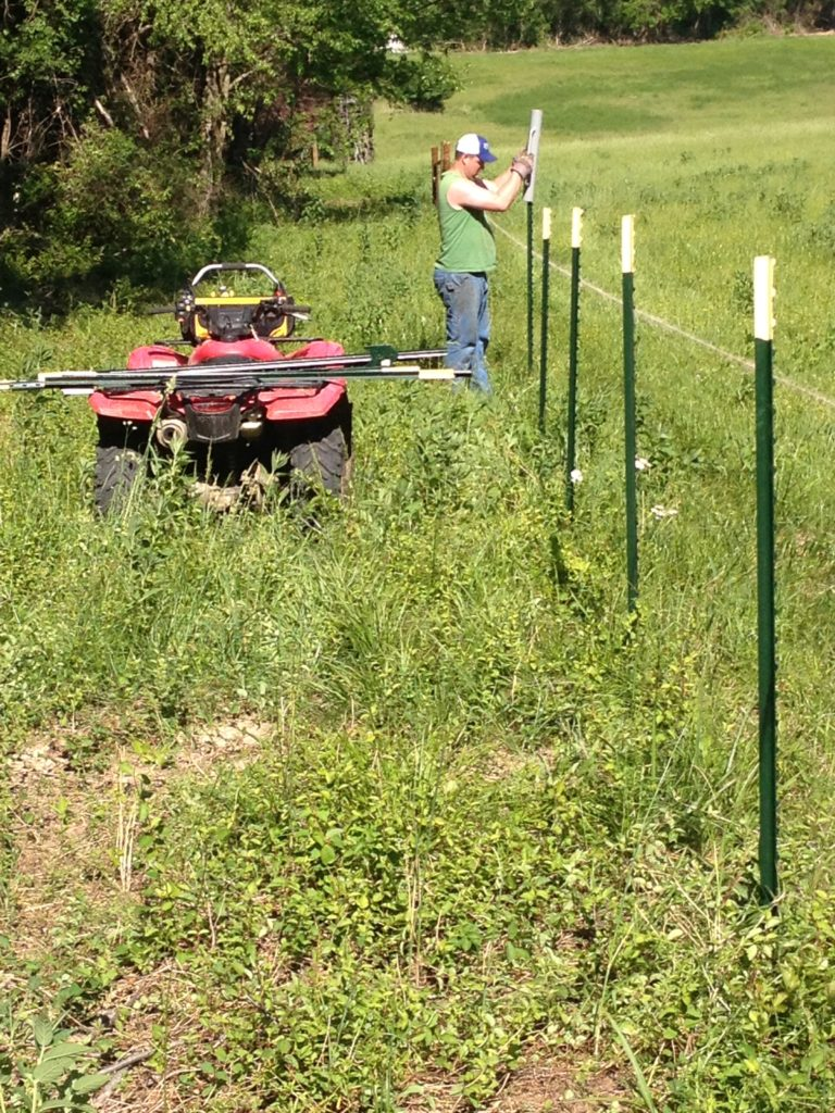 Honda ATV   building a fence post digger   Clover Meadows Beef Grass Fed Beef St. Louis Missouri   Free Delivery