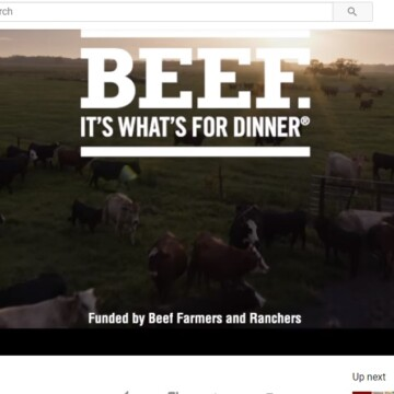 beef commercial - clover meadows beef grass fed beef STL