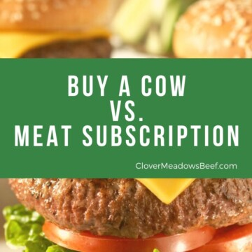 Buying a Cow vs Meat Subscription delivery service - Clover Meadows Beef Grass Fed Beef