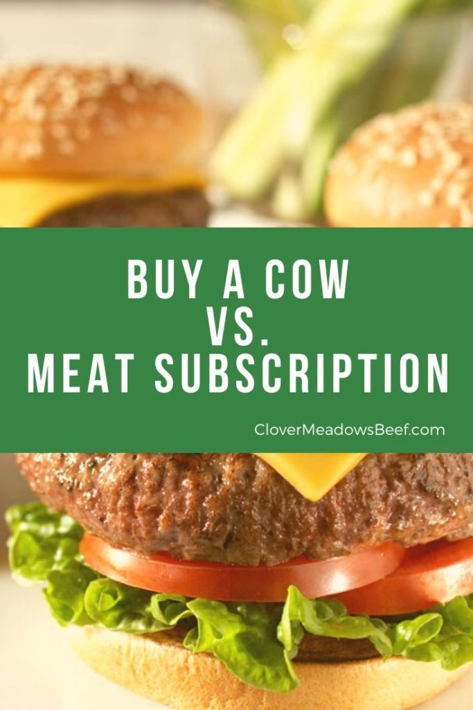 Buy a Cow vs. Meat Subscription Meat Delivery Service - Clover Meadows Beef Grass Fed Beef